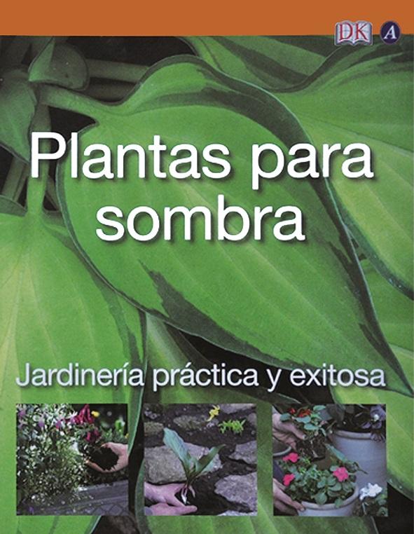Plantas para sombra for Plantas sombra exterior